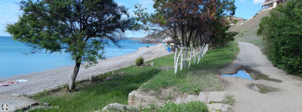 фотография пляжа