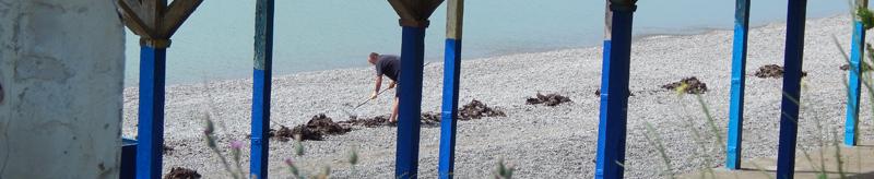 фото человека очищающего пляж от старой сухой травы