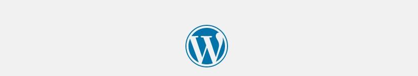 Вставка PHP кода на страницу в wordpress — плохое решение