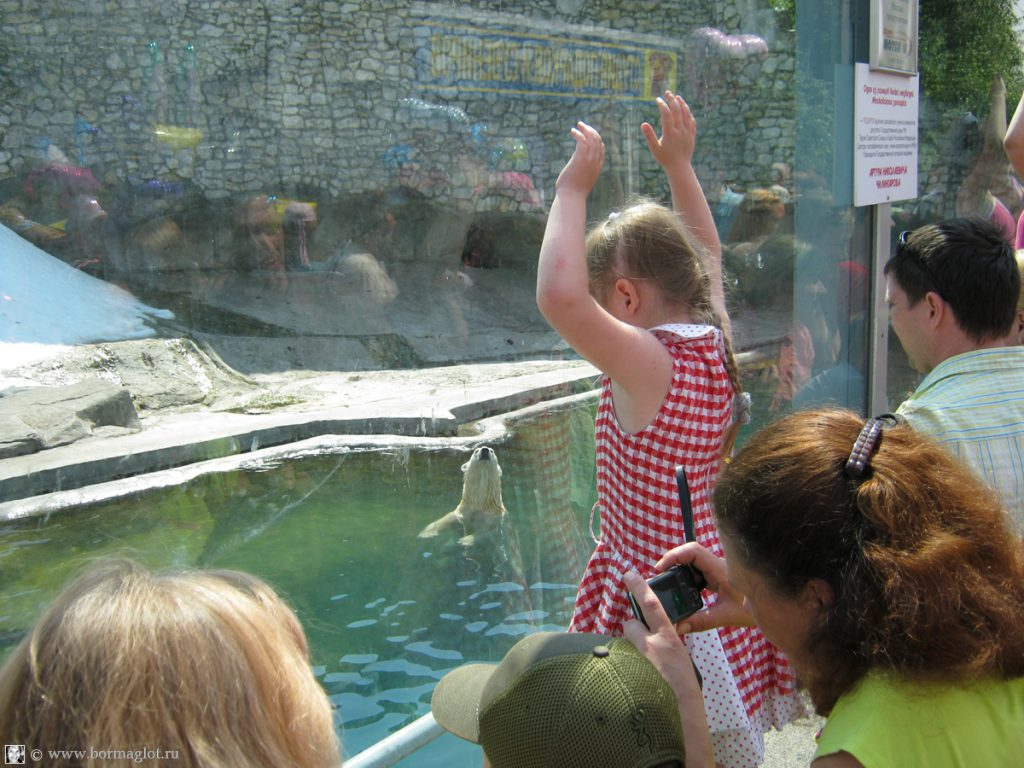 фотография посетителей зоопарка