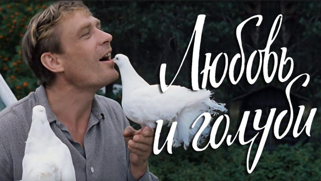 кадр из фильма «Любовь и голуби». Очень близкий контакт с животными.